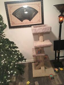 Scratching post (full size $200 2 month ago) - comes with cat! Prince George British Columbia image 5