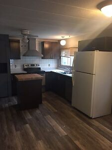 Renovated mobile in Mustang for sale