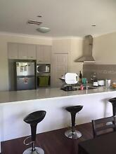 Room for rent in great location Camp hill Camp Hill Brisbane South East Preview