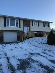 NEWLY RENOVATED 4 BEDROOM HOUSE IN QUIET LANTZ SUBDIVISION