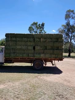 Small Bales Lucerne hay for sale  location Forbes