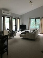 Room + bathroom available in Lane Cove Lane Cove Lane Cove Area Preview
