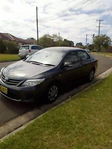 2011 Toyota Corolla Sedan Villawood Bankstown Area Preview