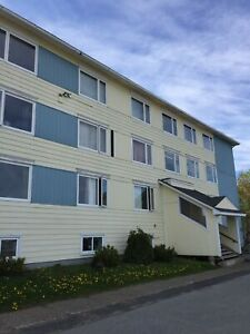 Fallsview Terr, West U313 - ALL INCLUSIVE one bedroom