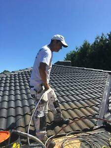 House and Roof Painting