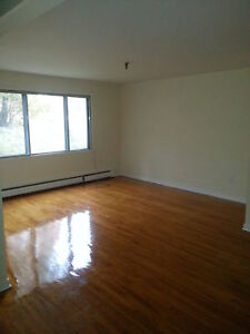 SPRYFIELD'S BEST HUGE 2 BEDROOM WITH HARDWOOD FLOORS FEB 1ST