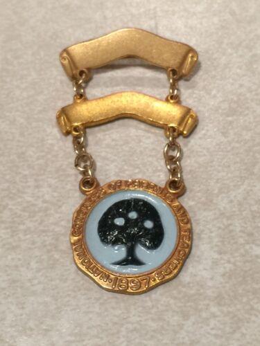Antique 1897 NATIONAL CONGRESS PARENTS & TEACHERS Award Pin LGB 10K Gold Filled