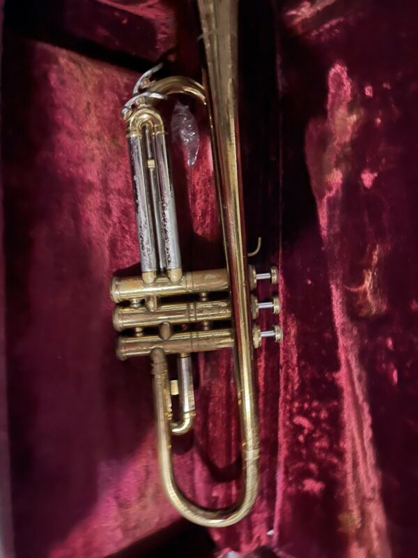 skalman super trumpet Has Scratches/small Dent Sold As Is
