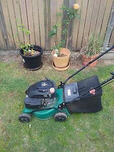 The Green Machine 4 Stroke Mower with Catcher Camira Ipswich City Preview