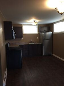 1 bedroom basement newly renovated central moncton