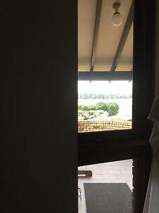 Cedar windows Concord Canada Bay Area Preview