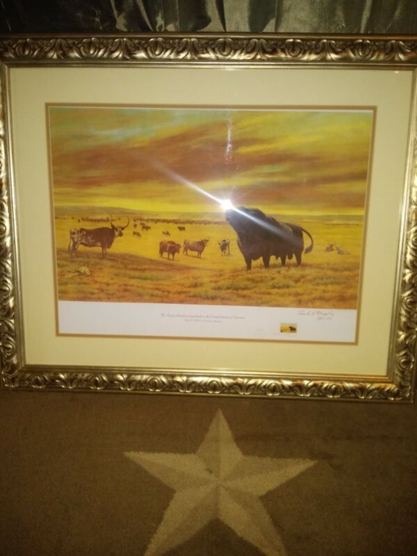 FC Murphy Angus Breed Is Launched In United States framed print