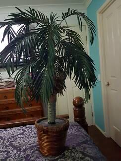 fake palm tree in Balinese style pot.
