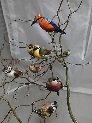 Eis Dekoration (Vogel - Dekoration, Eisvogel, Eule, Sort Nr.1, 8 Stück, )