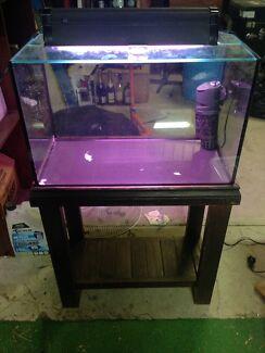2ft Aquarium and Stand