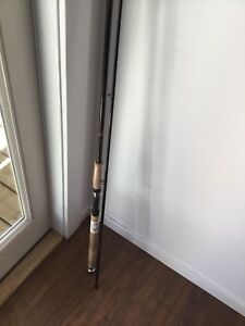 Fishing salmon steelhead rod