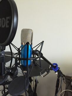 Studio Condenser Microphone + Shock Mount + Cable Bidwill Blacktown Area Preview