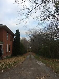 Country home available immediately  Peterborough Peterborough Area image 10