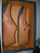 Lacoste genuine leather shoes size 10 Cameron Park Lake Macquarie Area Preview