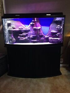 80 gal bow front for sale
