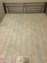 Queen bed + mattress Kallangur Pine Rivers Area Preview