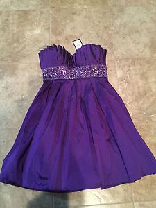 Laura Petites Purple Dress Size 4, Grads Prom BNWT MSRP $245.00
