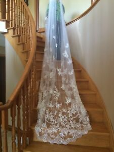 Beautiful and elegant cathedral veil