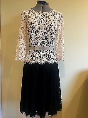 (NWT Tadashi Shoji Illusion Lace 3/4 Sleeve A-Line Latte Black Dress Size 6)