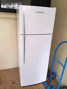 Fisher paykel e411t 411l refrigerator fridge Loftus Sutherland Area Preview