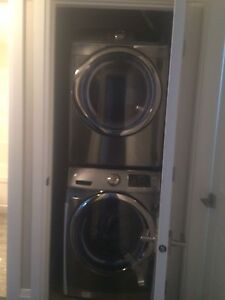Bright and brand new basement suit in evergreen area