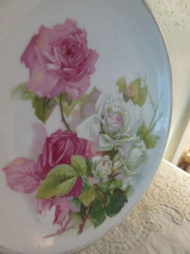 Vintage Hand Painted Pink Roses Plate Altwasser Made in Silesia Germany