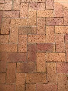 Red Brick Pavers Glenelg Holdfast Bay Preview