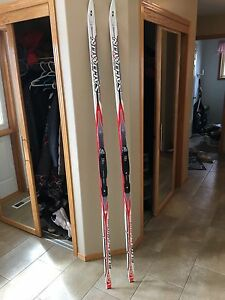 Salomon cross country skis