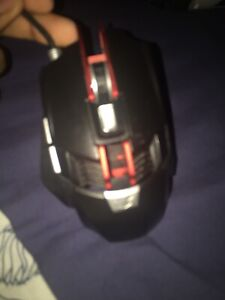 Black web mouse