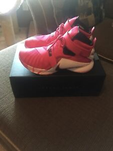 Nike Lebron Soldier 9's