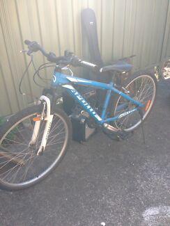 Apollo mountain bike  Essendon Moonee Valley Preview