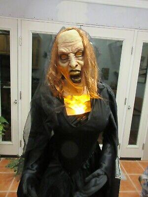 Flaming Black Widow 5' Witch Animatronic Halloween Decorations by SPIRIT Box