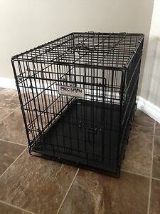 Crate for Medium-Sized Dog