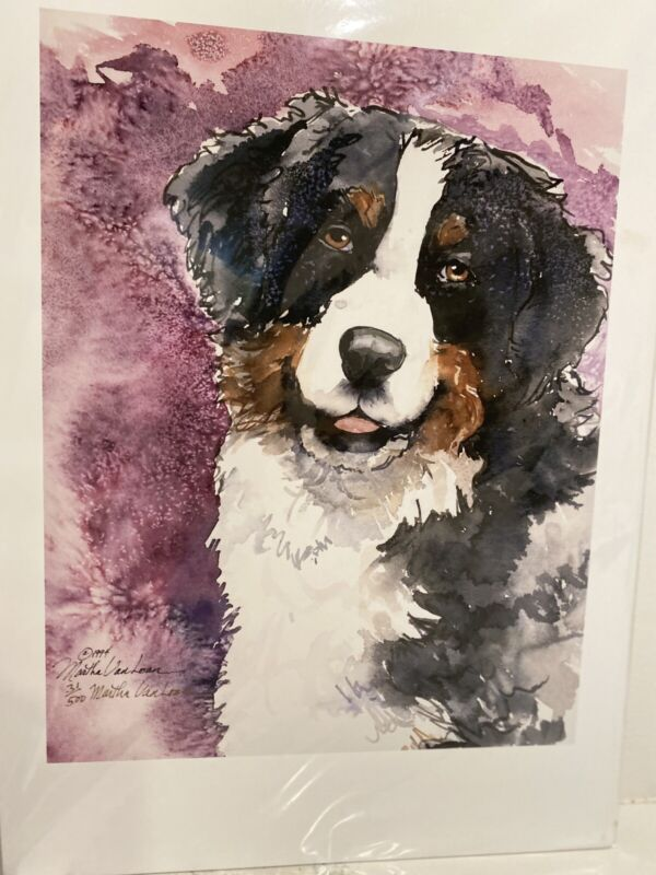bernese mountain dog Head Study Ltd Ed 11x14 Print By Van Loan