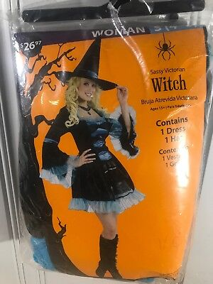 Sassy Victorian Witch Adult Halloween Costume Small - Victorian Witch Costume