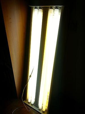 American Fluorescent Corp high bay light fixture  4 bulb lamp T12