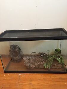 REPTILE STUFF NEED GONE! Cambridge Kitchener Area image 1
