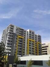 1X1 New Apartment in Perth CBD, Fully Furnished Perth CBD Perth City Preview