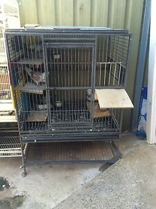 Racing pigeons with cage n trap Macquarie Links Campbelltown Area Preview