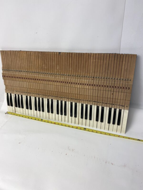 Vintage 1960's Schober Organ 61 Wooden Keys