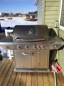 Large stainless steel propane bbq