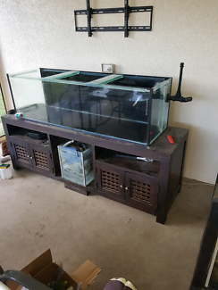 5 foot tank and stand