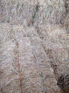 Meadow hay square bales West Coolup Murray Area Preview