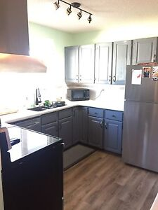 Completely Renovated Main Floor Suite