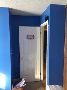 Blue paint - Behr Premium Plus
